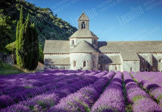 provence Domaine et Chasse